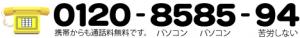 0120-8585-94